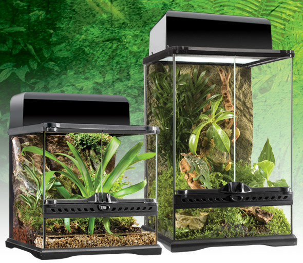 natural_terrarium_mini_se