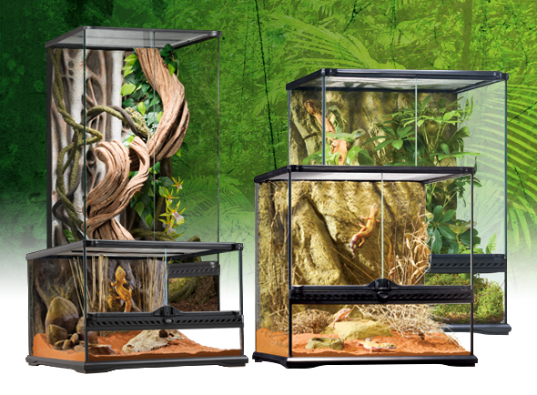 natural_terrarium_small_s