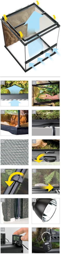 natural_terrarium_small_u