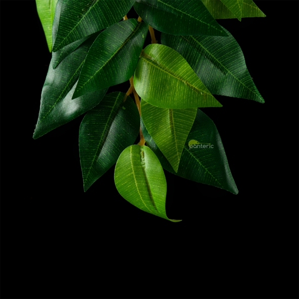 Искусственное растение Exo-Terra Hanging Rainforest Plants - Ficus, medium