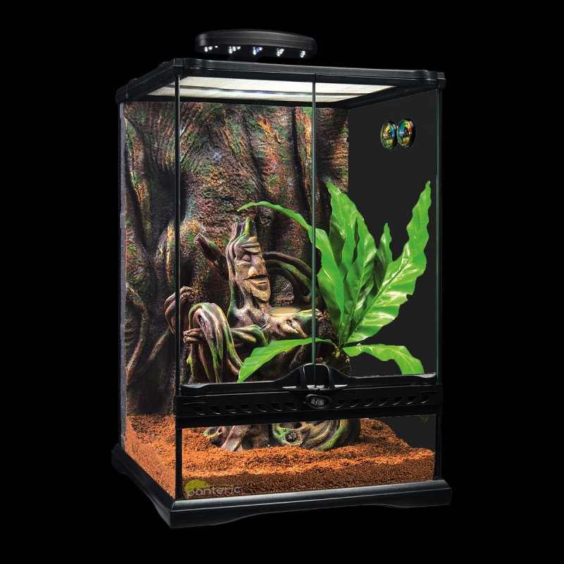 Crested Gecko Terrarium Small